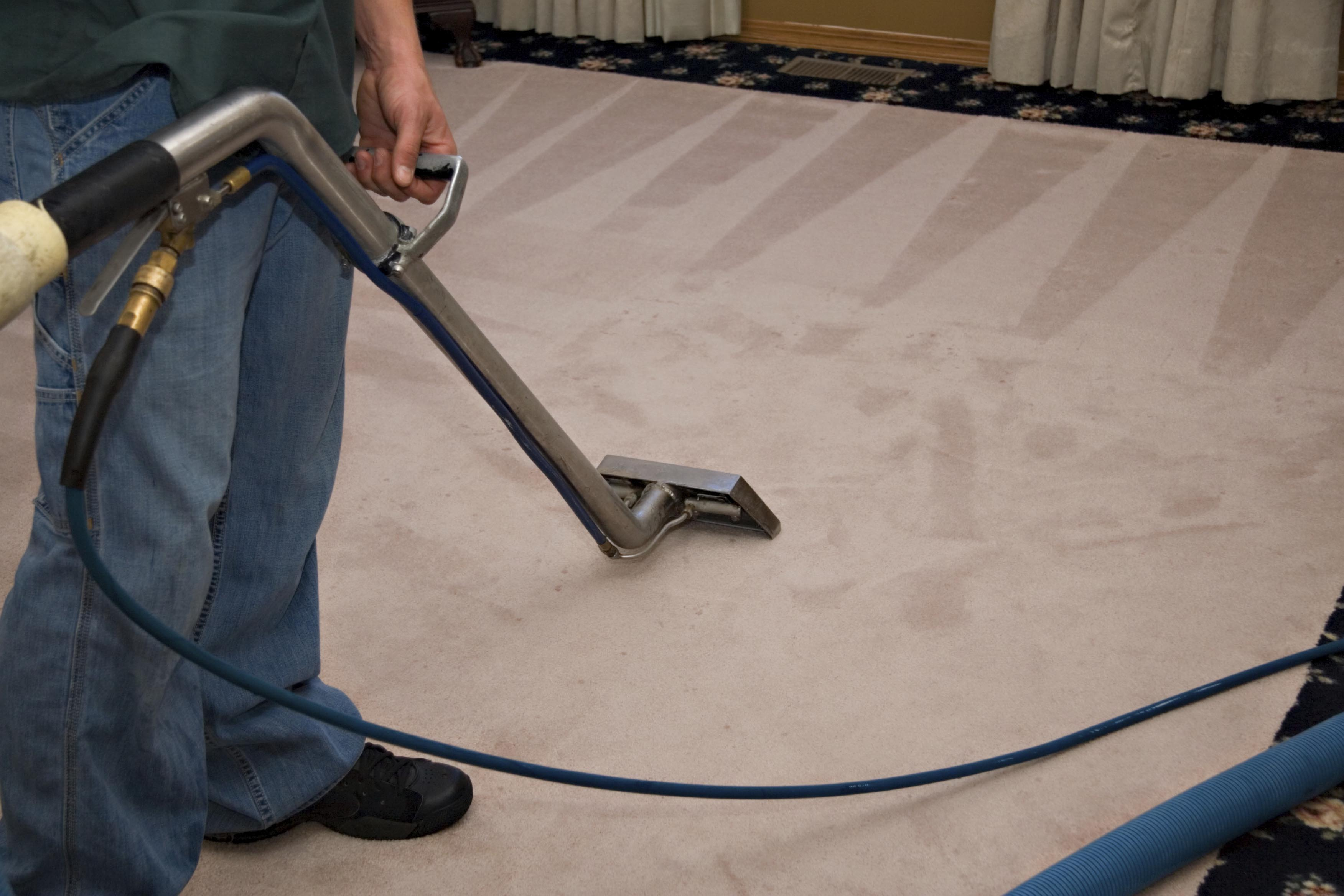 Image result for carpet cleaning orange county