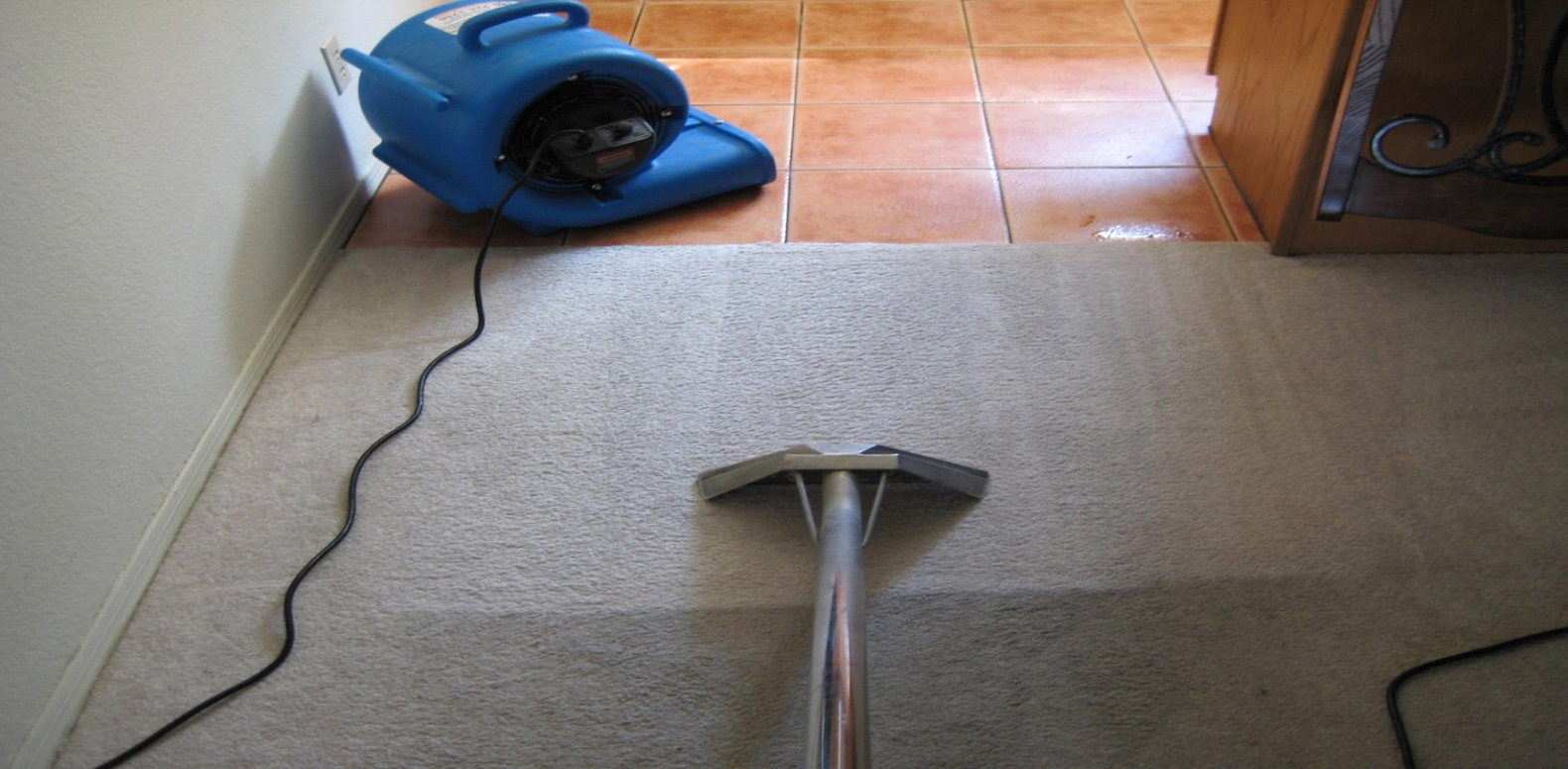 Green Floor Care Carpet Cleaning Orange County California