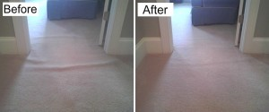 Carpet Repair and Restretching